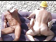 Volwassen teef op het strand